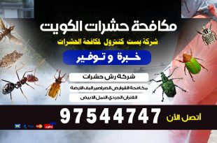 شركة مكافحة حشرات الوفرة