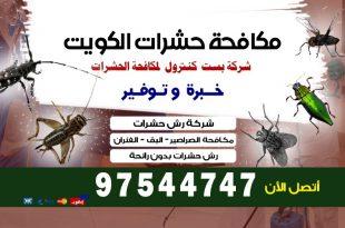 شركة مكافحة حشرات مبارك الكبير