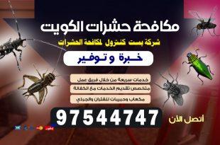 شركة مكافحة حشرات الاحمدي