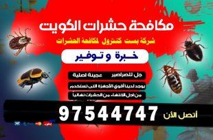 شركة مكافحة حشرات الفحيحيل