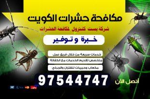 شركة مكافحة حشرات المنقف