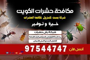 شركات مكافحة البق في الكويت