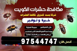 شركة مكافحة حشرات بأرخص الأسعار بالكويت