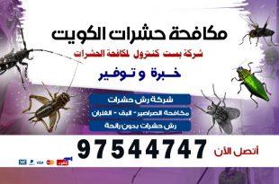 شركة مكافحة حشرات 24 ساعة بالكويت