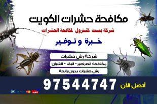 شركة مكافحة الحشرات بالرقعي بالكويت