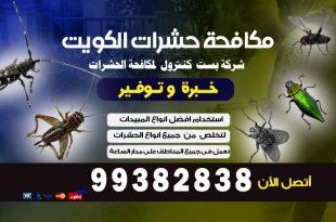مكافحة القوارض بدولة الكويت