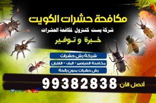 مكافحة الحشرات بالكويت