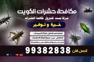 تليفون مكافحة القوارض بالكويت