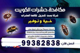 مبيدات البق شركة بست كنترول الكويت