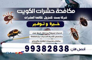 أقوى مبيد حشري للبق فى الكويت