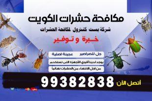 أفضل شركة مكافحة حشرات فى الكويت