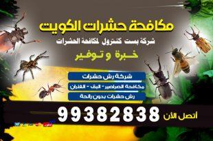مكافحة حشرات المنزل في الكويت