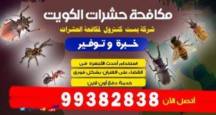 شركة رش مبيدات حشرية الكويت