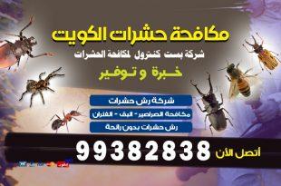 شركة رش مبيدات حشرية بالكويت