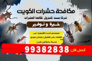 التخلص من الصراصير للابد في الكويت