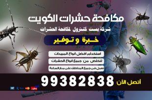 مكافحة الحشرات والقوارض فى الكويت