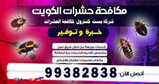 القضاء على الصراصير في الكويت