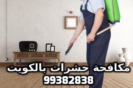 شركة مكافحة حشرات بخيطان بالكويت 99382838