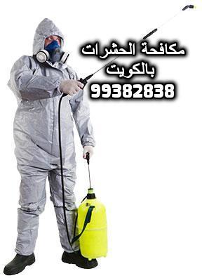 مكافحة الحشرات الجهراء 99382838