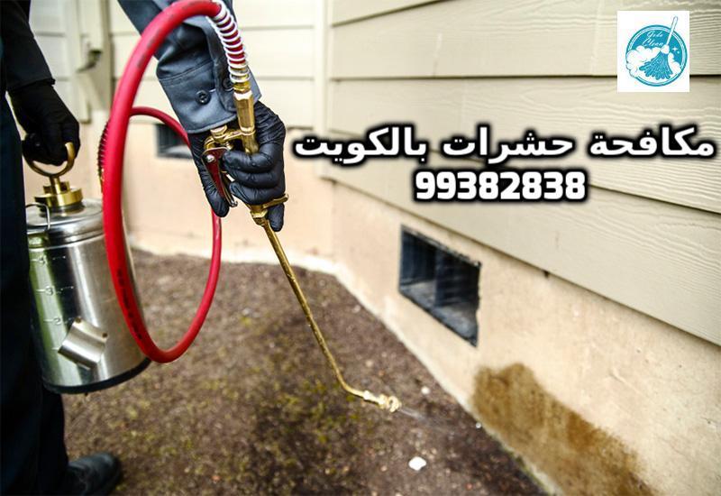 شركة مكافحة حشرات بجنوب السرة بالكويت 99382838