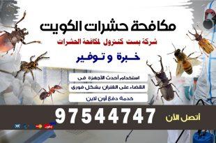 مكافحة الحشرات الطائرة في الكويت