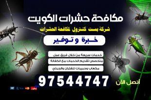 طريقة التخلص من الحشرات المنزلية بالكويت