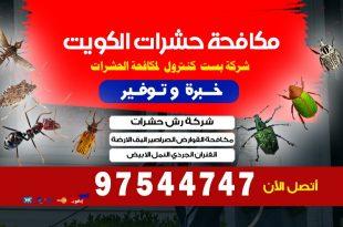 أنواع ديدان الأرض في الكويت