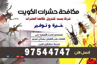 مكافحة الديدان المنزلية في الكويت