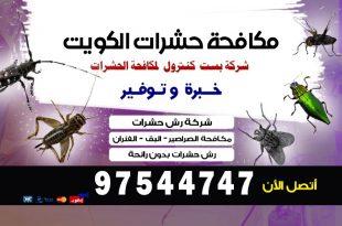 مبيد حشري قوي في الكويت