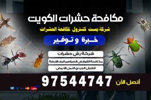 افضل مبيد للحشرات المنزلية في الكويت
