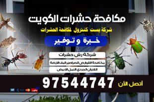 مكافحة الارضة في الكويت
