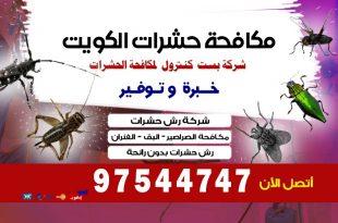التخلص من الحشرات المنزلية في الكويت