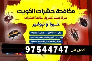 مكافحة السوس في الكويت