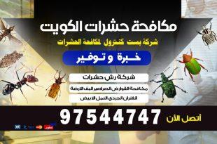 حشرة السوس الخشب في الكويت