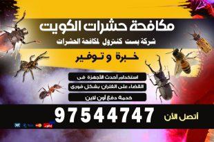 مبيدات البق في الكويت