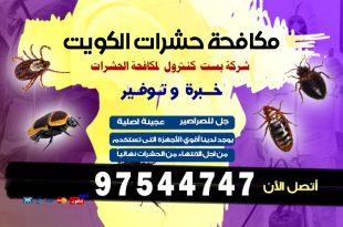 مكافحة عثة الملابس في الكويت