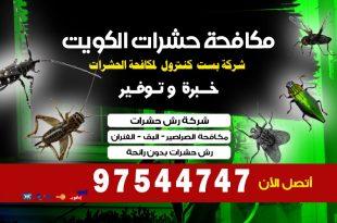 المكافحة تخلص من العته في الكويت
