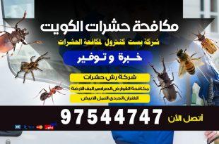 مكافحة العثة المنزليه في الكويت