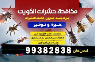كيف نقضي على الارضة في الكويت