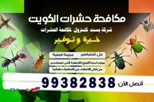 طرق التخلص من البق نهائيا في الكويت