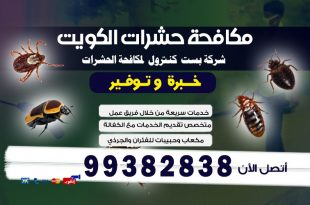 طرق التخلص من البق في الكويت
