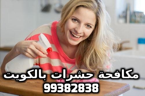 كيف اتخلص من الحشرات الصغيرة في المطبخ الكويت 99382838
