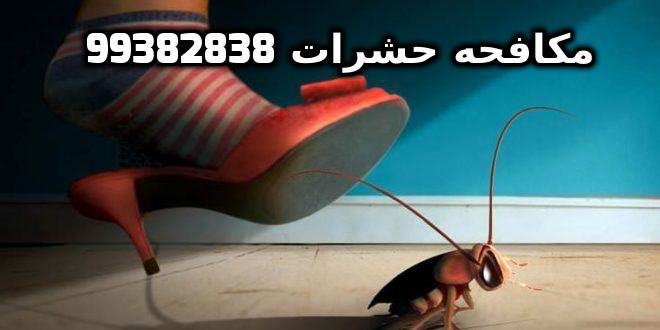 افضل مبيد للحشرات المنزلية في الكويت 99382838
