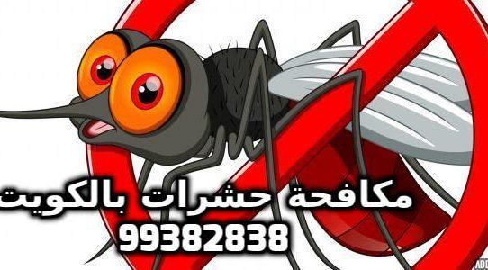 مكافحة الناموس في الكويت 99382838