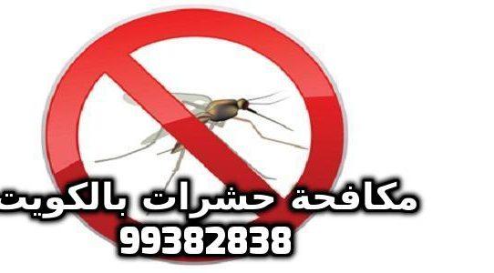 افضل حل للبعوض في الكويت 99382838