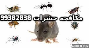 افضل مبيد حشري للصراصير بالكويت 99382838