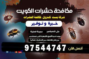 افضل المبيدات الحشرية بالكويت