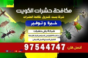 كيفية التخلص من الحشرات الزاحفة في المنزل بالكويت