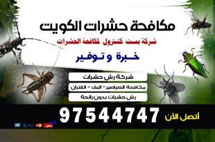 حشرات المنزل بالصور بالكويت